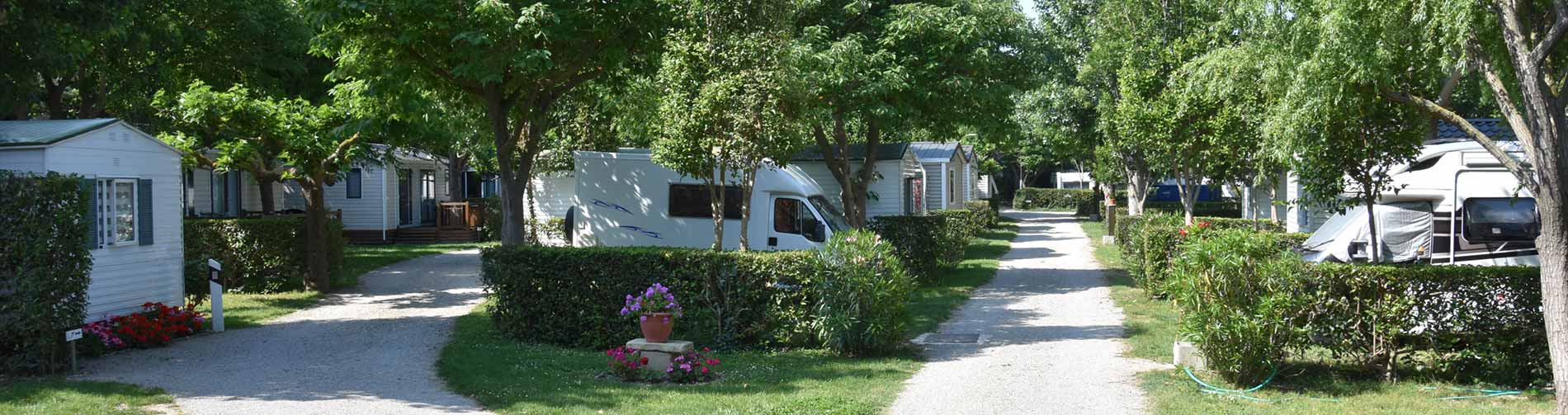 Allée du camping Saint-Gabriel : location mobile home paca